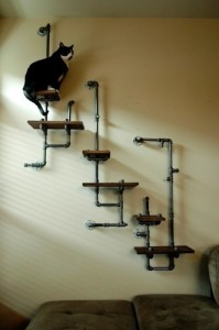 Cat playground made from pipes